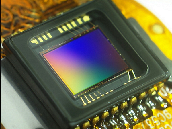 [鳥專欄]大,真的比較好:淺談數位相機的感光元件(下)