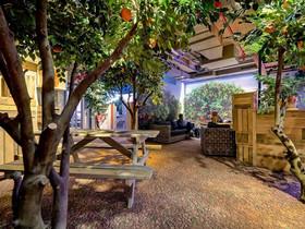 歡迎光臨 Google 以色列辦公室,這裡有叢林風、海洋風、還有溜滑梯
