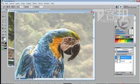 Painter:將風景照片轉為藝術畫