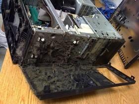 該清潔你的電腦了,不然會長出奇怪生物