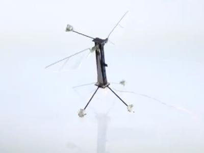 飛翔的機器昆蟲 RoboBee,僅硬幣大小!