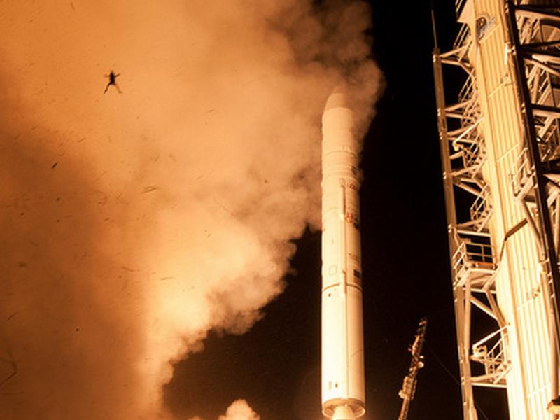 其實你並不孤單:那些跟火箭一起升空的動物們