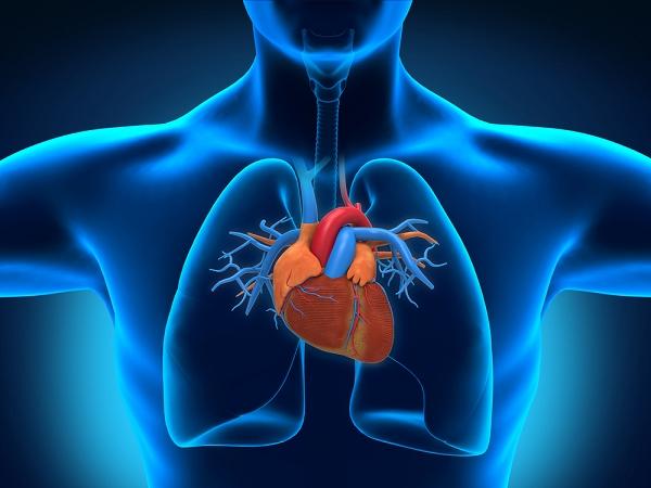 3D 列印的「登月行動」:科學家計畫列印出完整心臟 | T客邦