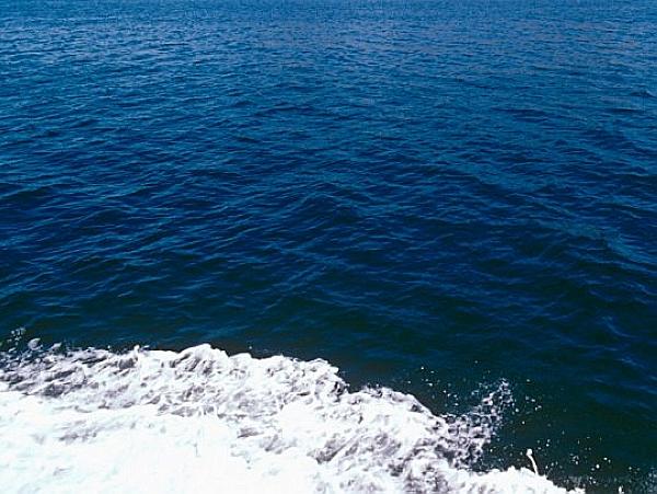 發現大量海底地下水,是20世紀水資源消耗總量100倍