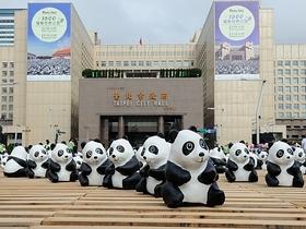 1600 隻超萌紙熊貓正式開展亮相,回顧紙熊貓台北市快閃行動
