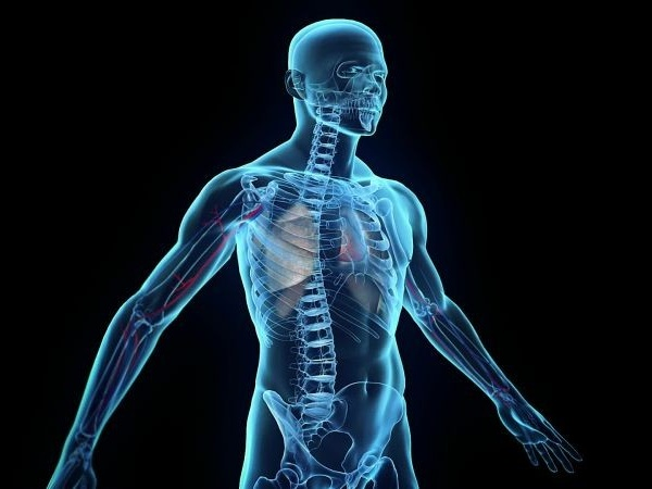 Google X 最雄心勃勃的項目:探索人體內部