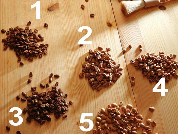 在家沖煮義式咖啡:從咖啡豆到咖啡機的選擇