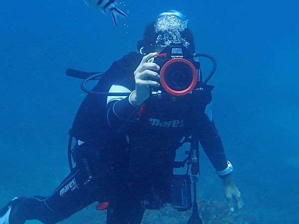 水下十公尺潛水實測比基尼...喔,是 Olympus TG-4 防水相機
