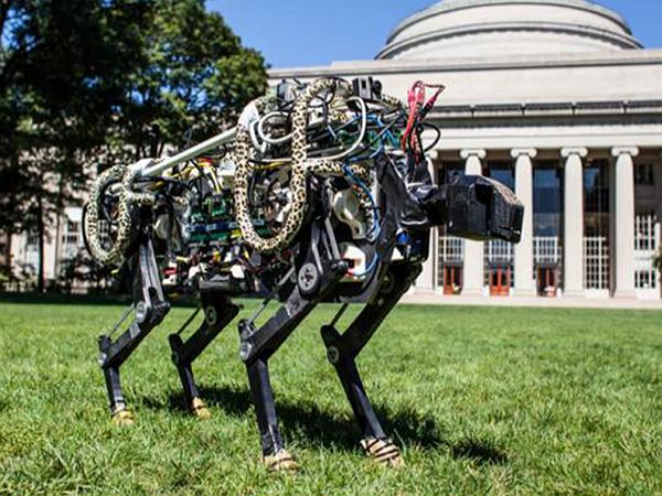 機械獵豹,仿生機械技術的實例