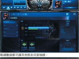 【星海爭霸2】【戰網Battle.net】個人紀錄管理-玩家資訊、成就與天梯