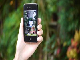 【掌機與手機遊戲】好鳥喔!手機玩鳥這樣也型?!