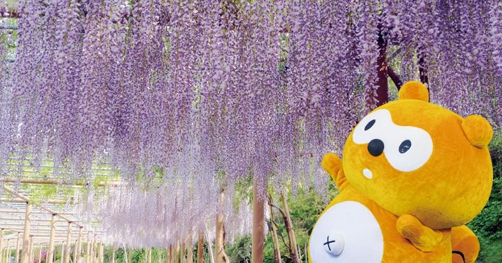 「得易 Ponta 日本卡」 -- 日本初夏之旅必備的最佳夥伴