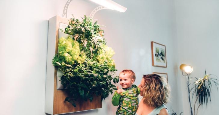 用 App 將你家變成智慧菜園,Herbert讓你在家中牆上種菜