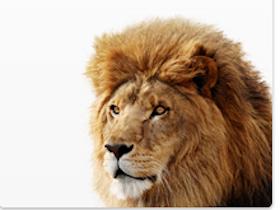 觸控 OS 時代, Mac OS X 10.7 Lion 速覽