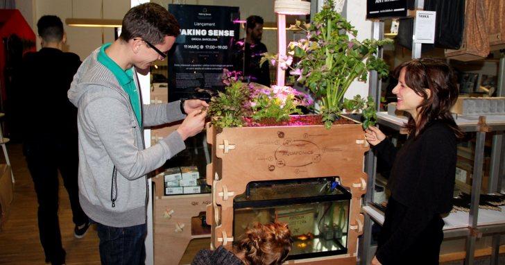 Aquapoineers:想在家裡種菜?去列印一套「魚菜共生」系統吧