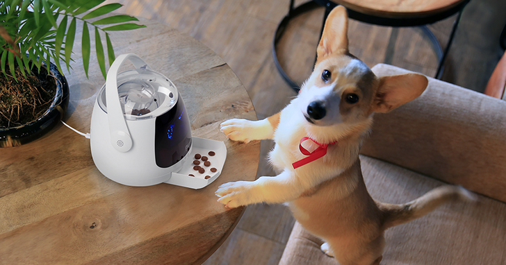 寵愛你的毛小孩,宏碁子公司波寶推出三款寵物智慧穿戴裝置