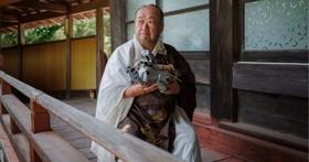 114 隻機器狗壽終正寢,日本寺廟為它們舉行了一場葬禮