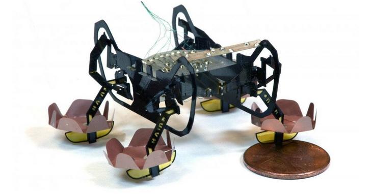 蟑螂仿生機器再進化,從地面運動變成了水陸兩棲