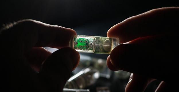 吞下肚的「腸道膠囊」,偵測腸道病變後可將警訊傳送至智慧手機