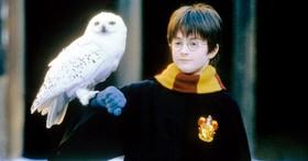 前兩天是哈利‧波特的生日,他其實已經 38 歲了