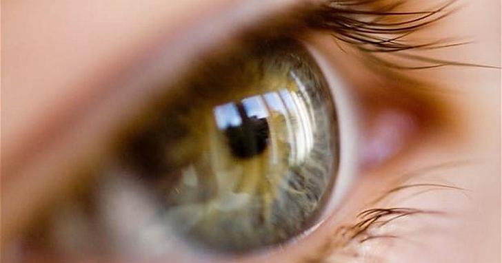 超薄石墨烯製成的「人造視網膜」 也許可以幫助上百萬人恢復視力
