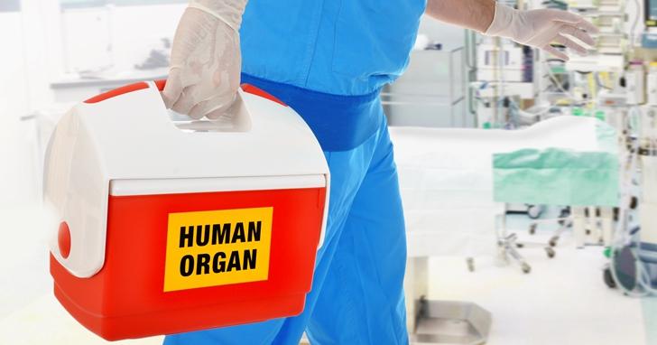 生殖器移植技術已經成功,可人們還在爭議倫理問題