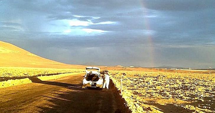 智利的阿塔卡瑪沙漠數百年來的首次「豪雨」,導致了大規模的物種滅絕