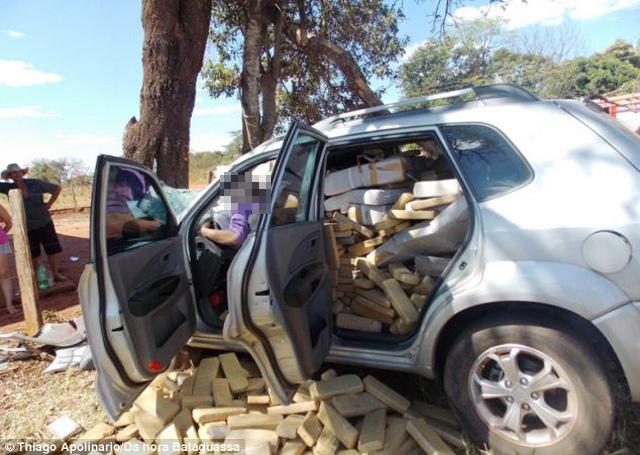 事實證明毒品會致命!為逃避員警追緝,毒販撞樹後被大麻磚給砸死!