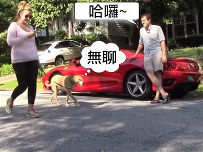 法拉利 Ferrari超跑並不是把妹神器,它只會吸引一堆男性車迷跟你搭訕!