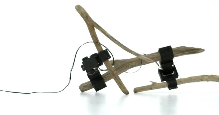 隨便撿兩根樹枝,就能做出一個能走路的機器人
