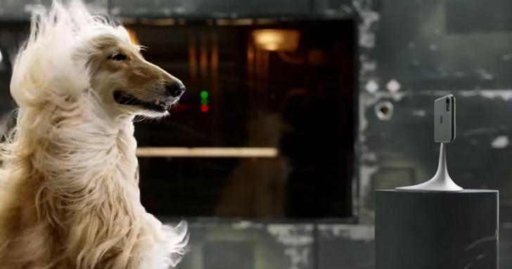 iPhone 11 Pro的新廣告,找來了可麗牧羊犬用它的飄逸長毛告訴你三鏡頭怎麼拍都好看