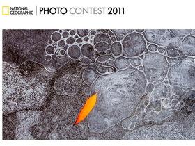 為國爭光!2011國家地理攝影大賽,台灣區精選作品欣賞