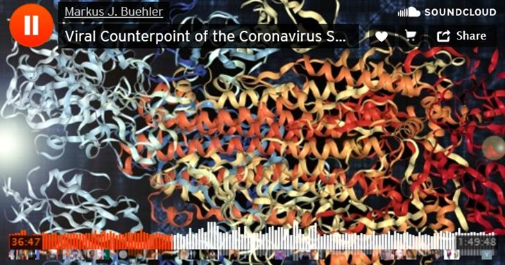 用 AI 將冠狀病毒的結構變成可以「聽」的音樂!協助科學家發現顯微鏡遺漏的細節