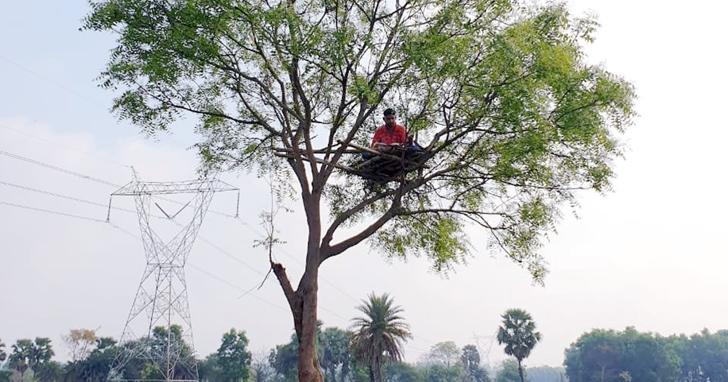 由於訊號差,印度老師在樹上建「教室」,學生出席率創歷史新高!