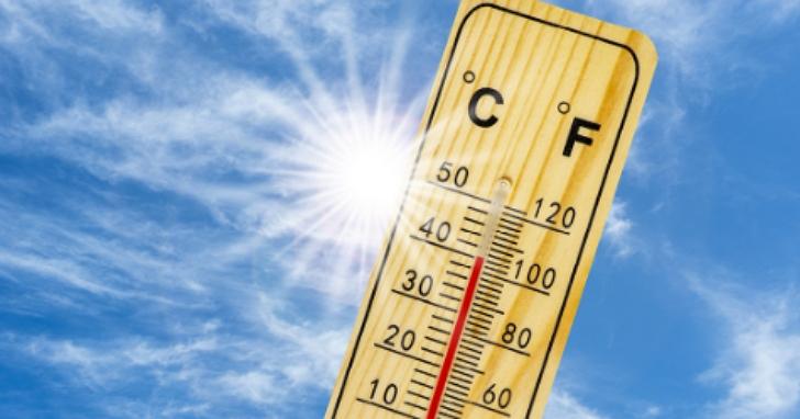 6月已385人熱到送醫!高溫狂曬當心導致中風、休克!3要訣幫全家人健康出遊防中暑