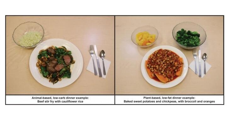 研究稱低脂植物性飲食在減脂方面勝過低碳水化合物飲食