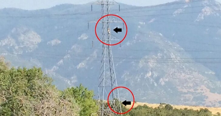 極限抒壓?美國警方警告當地居民,別再在高壓電塔上架設「吊床」