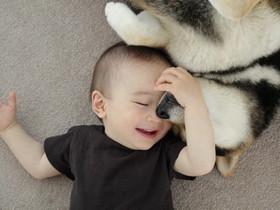 太作弊了!拍照兩大可愛元素寵物+小寶寶,看他們的生活故事