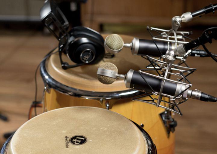 Baby Bottle SL è adatto per l'uso di vari strumenti musicali per mantenere il suono puro e pieno dello strumento.